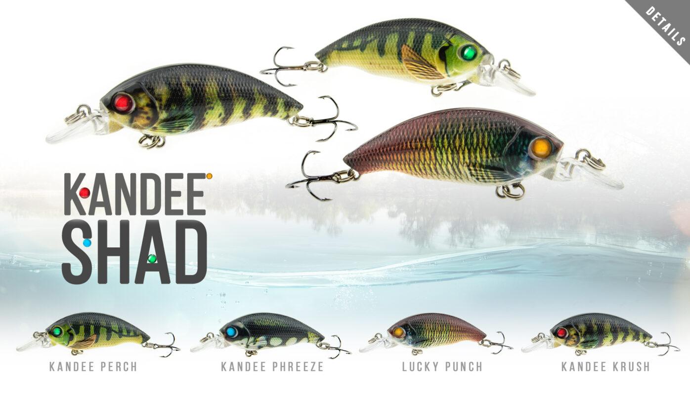 B8LAB-Kandee-Shad